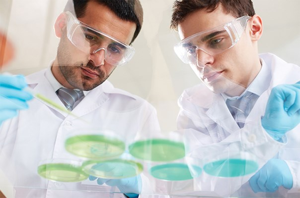 Biochemist and Biophysicist Educational Pathway
